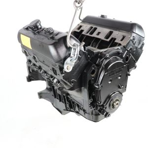 Mercruiser 4.3L Engine  (F300143G)