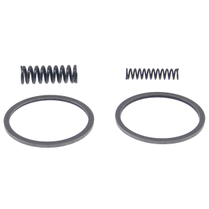 Pump Ring Kit,700R4/4L60E(No YoYo) 82-Up