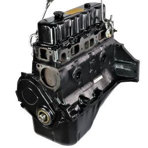 GM 3.0L Engine (F300001G)