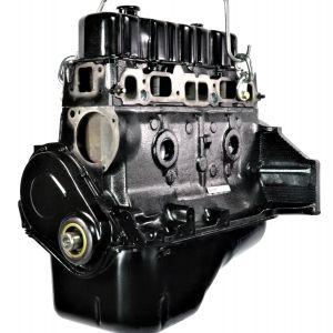 GM 3.0L Engine (F300003G)